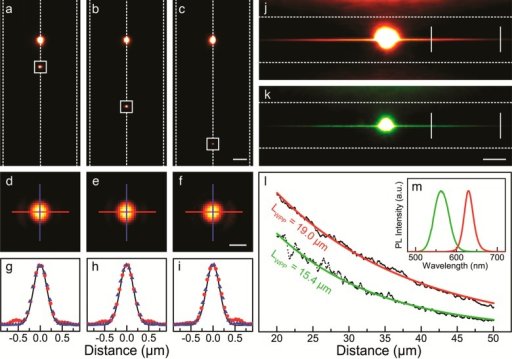 Characterization of single-mode, deep-subdiffraction wedge-plasmonpolaritons (WPPs). (a–c) False-color fluorescence micrographsof QDs (bright spots, emission peak at 630 nm) placed on the apexes(dashed vertical lines in the image centers) of Ag wedges at differentdistances from bump lines. WPPs are launched by the QDs and scatterlight (squares) at the bumps (scale bar = 5 μm). (d–f)Magnified views of the scattered light from the bump lines in (a–c),normalized for comparison (scale bar = 500 nm). (g–i) Spatialcross sections of the scattered signals in (d–f) in the x direction (blue) and the y direction(red) compared with the expected signal of an ideal point dipole (blackline). (j, k) False-color fluorescence micrographs from Ag wedgeswith QDs emitting at 630 and 564 nm, respectively. The bright spotsin the center are direct fluorescence. With long exposure times, weakscattered light from WPPs propagating along the wedge apexes is detectedas horizontal streaks on either side (scale bar = 10 μm). Thehorizontal dashed lines show the bases of the wedges. (l) Intensityprofiles plotted along the wedge between the vertical lines in (j,k), yielding propagation lengths of 19.0 and 15.4 μm for WPPsgenerated by red and green QDs, respectively. (m) Fluorescence spectraof the red and green QDs.