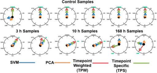 Sample classification results from four bioinformatics classification methods—support vector machine with linear kernel (blue arrows), principal component analysis (orange arrows), time point weighted signatures method (red arrows), time point-specific signatures method (green arrows).The arrows indicate the time point reported by each of four methods with highest confidence. Twelve blinded samples, corresponding to four time points, were analyzed: 6 control samples, two 3 h samples, two 10 h samples, and two 168 h samples.