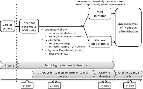 A flow chart of treatment strategies in patients included in the study. WRF worsening of renal function, IV intravenous, echo echocardiography and renal ultrasound