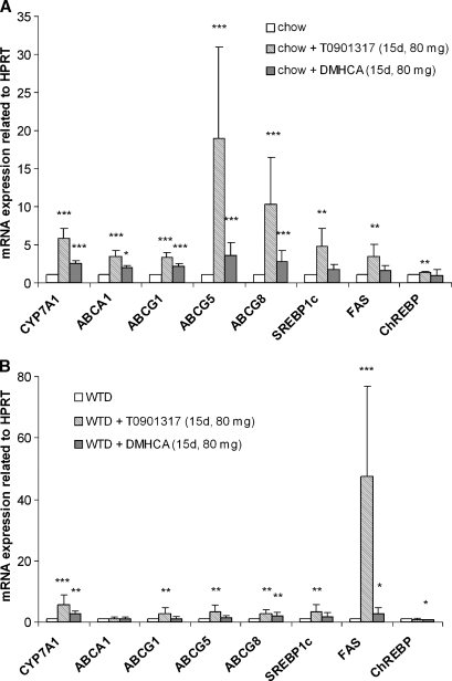 Liver analyses of C57Bl/6 mice fed chow diet or WTD ± T0901317 or DMHCA (80 mg/kg body weight/day) for 15 days. Real-time PCR expression ratios upon liver X receptors (LXR) agonist treatment in chow (A) and WTD (B) fed mice including hypoxanthine guanine phosphoribosyl transferase (HPRT) normalization were calculated by pairwise fixed reallocation test. Controls fed chow or WTD without LXR ligand were arbitrarily set to 1. Data are expressed as mean values ± SD; n = 8 performed in duplicate. * P < 0.05; ** P ≤ 0.01; *** P ≤ 0.001.