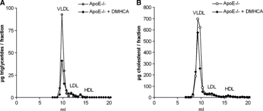 Effect of DMHCA on distribution of triglycerides and cholesterol in plasma lipoprotein fractions of apoE-deficient mice. Lipoprotein profile of plasma pools of five fasted female apoE-deficient mice fed WTD ± DMHCA (8 mg/kg body weight/day) for 11 weeks. Plasma lipoproteins were separated by fast protein liquid chromatography. TG (A) and TC (B) concentrations in each fraction were measured enzymatically.