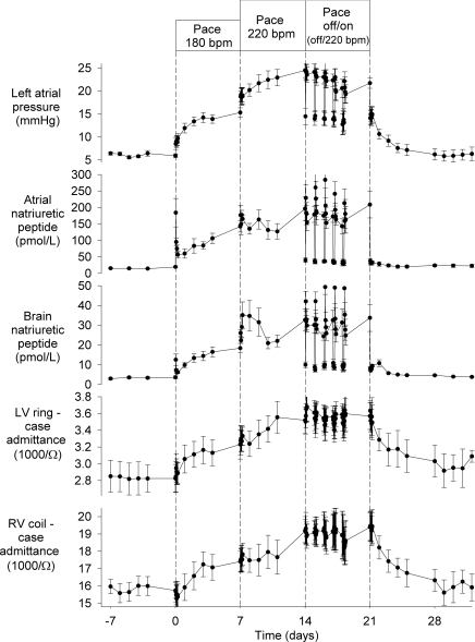 LAP, natriuretic peptide and LVring-case and RVcoil-case admittance vector responses in six sheep during acute and chronic changes in pacingValues shown are means ± S.E.M.