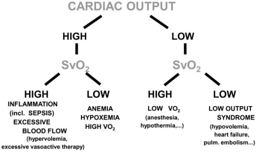 cardiac output thesis Shape and function of cardiac muscle in order to sustain the increased cardiac output demanded by cells, for the remainder of this thesis.
