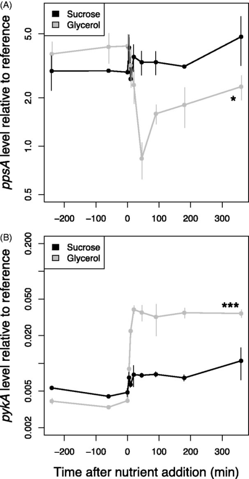 ppsA (A) and pykA (B) do not respond significantly to 5% sucrose in the Δura3 strain (black lines). ppsA and pykA respond to 0.167% glycerol stimulus in the Δura3 strain (gray lines). Gene expression was measured by RT-qPCR and is shown plotted on a logarithmic axis. Asterisks indicate significance of the difference in expression level between the beginning and the end of the time course; * significant at P < 0.05; ** significant at P < 0.01; *** significant at P < 0.001.