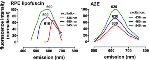 Fluorescence emission spectra of human RPE lipofuscin and A2E (in PBS with 2% DMSO). Emission was recorded at excitation wavelengths 436, 480 and 545 nm as published [49]. Emission maxima are indicated.