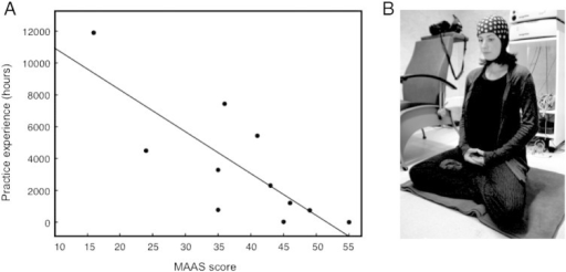 (A) Correlation between individual MAAS scores (n = 11) and amount of Zen meditation experience in hours (r = − .8, p < .01). Low MAAS scores indicate high levels of mindfulness, attention and awareness, and vice versa. (B) Illustration of the experimental setting during meditation.