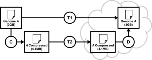 Comparison between the transfer of a compressed and an uncompressed genome.Steps taken to simply transfer a genome file (T1), or to compress (C), transfer (T2) and decompress the file (D).