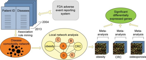 Our approach contains three steps: (1) We constructed a comorbidity network based on data mining; (2) we extracted the local network that contains paths from obesity to CRC, and analyzed the local network to pin point the strong comorbidity for both obesity and CRC; (3) we conducted gene expression meta-analysis to identify common genes shared among obesity, CRC and the comorbidity.