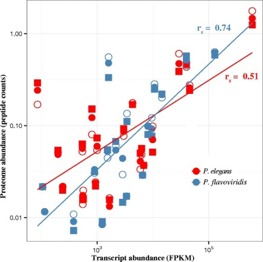 Transcriptomic and proteomic data present generally concordant pictures. When mapped against their own references, the proteomic and transcriptomic measures of abundance were correlated (Spearman rank p = 1.5 × 10−9, 5.3 × 10−9, for P. elegans and P. flavoviridis, respectively). Individual proteomic samples are represented by different shapes, with the sample used for the reference transcriptome shown as an open circle. Since only one transcriptome was sequenced for each species, biological replicates share the same X-coordinate. The methodology employed herein was that reported in [42]