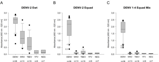 300 ng per well of DENV-2 Ewt (A) and Equad (B) and 160 ng per well of a DENV 1–4 Equad mixture (C) were tested with DENV- WNV- and TBEV- infected and YFV-vaccinated sera compared to negative (NEG) samples in an IgG-ELISA (n = number of individuals).Bottom and top of the boxes are the first and third quartiles. The median signal is depicted as a line inside the box. Whiskers represent the 9th and the 91st percentile. Outliers in B and C are marked with numbers (1–5). Measurements were performed in duplicates in at least two independent experiments.