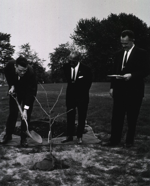 <p>Exterior view:  As Mr. Smith and Dr. Rogers look on, Dr. Blake adds a shovel of dirt to a cutting from the &quot;Hippocrates&quot; plane tree presented to NLM by the Greek Ambassador Alexis Liatis.</p>
