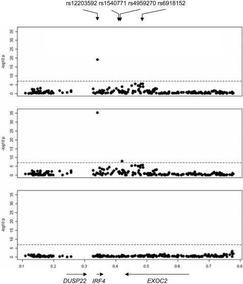 Association analysis of SNPs across IRF4 region.-log10 p-values from the primary test of association with hair color in the initial GWAS (top panel), from the test of association with hair color excluding individuals with red hair (middle), and from the test of association with red hair versus non-red hair (bottom). The region plotted spans Chr6:95272.789899 (NCBI build 35).