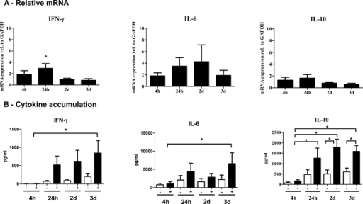 RT-PCR and cytokine assays of IFN-γ, IL-6 and IL-10 in