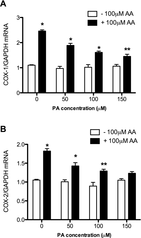 Effect of PA or AA on expression levels of Cox-1 and Cox-2BRIN-BD11 cells were incubated and in the absence or presence of 100 μM AA and in the absence or presence of increasing concentrations of PA as indicated for 24 h. After this time, the cells were harvested, and the expression levels of Cox-1 (A) or Cox-2 (B) were determined by real-time PCR. Expression levels were subsequently normalized to Gapdh (glyceraldehyde-3-phosphate dehydrogenase) expression. Results are means±S.E.M. for three individual experiments. A significant improvement in cell viability (*P<0.05 and **P<0.001) was observed at all concentrations of AA tested.