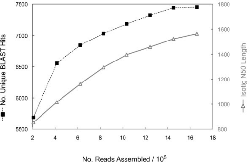 Assessing coverage of the O. fasciatus transcriptome. Randomly chosen subsets of increasing numbers of Titanium reads were used to generate progressively larger sub-assemblies. The number of reads in each sub-assembly (X axis) is plotted against the number of unique BLAST hits in each sub-assembly (left Y axis: black), and against the N50 isotig length (right Y axis: grey). For this analysis BLAST was performed against the SwissProt database. The number of unique BLAST hits plateaus when the assembly is composed of approximately 1.5 million reads. However, the N50 isotig length maintains an approximately constant rate of increase.
