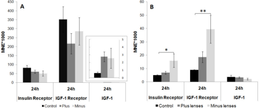 Insulin receptor, insulin-like growth factor-1 receptor, and insulin-like growth factor–1 mRNA levels after 24 h of plus (+7D) and minus (−7D) lens treatment in the cartilaginous sclera (A) and fibrous sclera (B). Results are expressed as the mean normalized expression (MNE)±SEM. Nine animals were analyzed per group. Statistically significant differences between the treated groups and the control, as determined by one-way ANOVA (ANOVA) are denoted in the graph (* for p<0.05 and ** for p<0.01). In the cartilaginous sclera, the mRNA contents of the two receptors were not significantly different. In the fibrous sclera, the expression of the insulin and the insulin-like growth factor (IGF)-1 receptor (IGF-1R) was higher in the minus lens–treated group compared to controls.