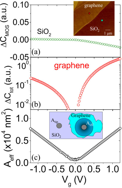 Evaluation of the effective area from local capacitance measurements. Local capacitance-voltage curves measured on fixed positions on bare SiO2 (a) and on graphene-coated SiO2 (b) for a sample not subjected to ion irradiation. AFM morphology of a graphene flake on SiO2, with indicated the probed positions by the SCS tip. (inset of a). Effective area evaluated from the C-V curves in (a) and (b). Schematic representation of Atip and Aeff (inset of c).