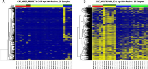 Heatmaps of RPMM cluster analysis using top 1000 filtered features by A) TM-GOF or B) SD-b methods using 26 colon cancer samples (data set #1). Rows represent features and columns represent samples; yellow represents high DNA methylation and blue represents low. The color bars at the top of the columns indicate sample tissue types (row 1) and clusters (row 2). In row 1 dark and light green indicate CIMP and non-CIMP tumors, respectively. In row 2 red, yellow, blue and green bars indicate the sample clusters found after two divisions of clustering using RPMM. In Figure A, the red and yellow clusters are identified at the second division, and no subdivision of the blue cluster is found. In Figure B, the red and yellow clusters separate in the second division, as do the blue and green clusters.