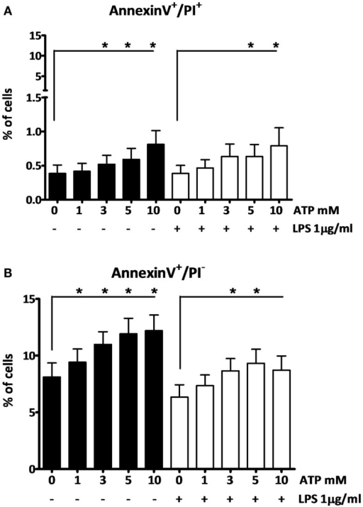 The effect of fresh ATP preparations on cell membrane integrity. (A) Cells that lost membrane integrity stain positive for AnnexinV and PI, and can be late apoptotic or necrotic. (B) Cells that stain only positive for AnnexinV are early apoptotic but have not lost membrane integrity. Higher concentrations of ATP cause more cell death (A) than a low concentration. ATP induces early apoptosis in all concentrations (B). Results from two independent experiments with a total of six donors were pooled and represented as mean + SEM.