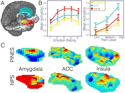 Region of interest analysis.Panel A illustrates the spatial distribution of the three anatomical ROIs used in all analyses (amygdala = yellow, insula = red, ACC = cyan). Panel B depicts the average activation within each ROI across participants for each level of emotion and pain in the emotion hold out (n = 61) and pain test datasets (n = 28). Error bars reflect ±1 standard error. Panel C illustrates the spatial topography of the PINES and NPS patterns within each of these anatomical ROIs. While these plots show one region, correlations reported in the text reflect bilateral patterns.