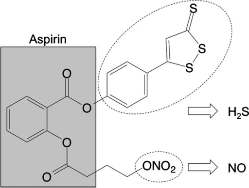 Structural components of NOSH-aspirin. The parent compound aspirin is shown in the shaded box. The parts of the molecule that releases NO and H2S are shown in the dotted ellipses. NO, nitric oxide; H2S, hydrogen sulfide.