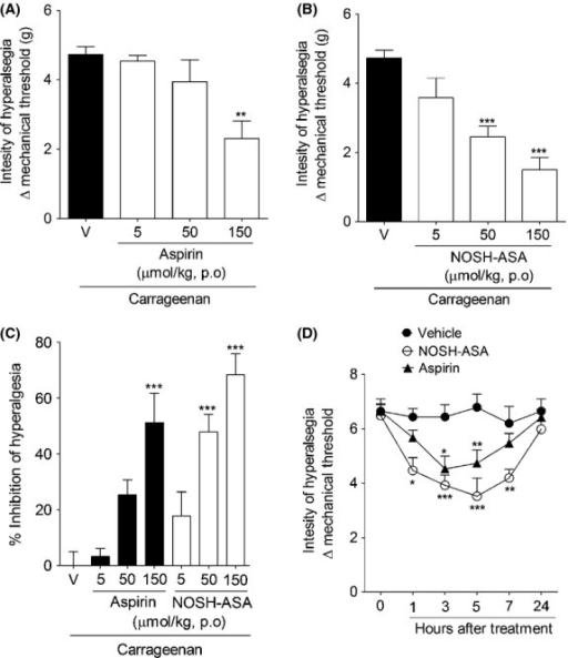 Effect of NOSH-aspirin (NOSH-ASA) and aspirin on carrageenan- and CFA-induced inflammatory hyperalgesia. Mice were pretreated with (A) aspirin (5, 50 and 150 μmol/kg), (B) NOSH-ASA (5, 50, and 150 μmol/kg) or vehicle (v) orally (p.o.) 30 min before the intraplantar injection of carrageenan (Cg; 100 μg/paw). The hypernociceptive responses were evaluated 3 h after carrageenan injection. (C) Percentage of inhibition caused by aspirin and NOSH-ASA (150 μmol/kg) upon carrageenan-induced hyperalgesia. (D) Animals received an injection of 10 μL of CFA in the hind paw. At 24 h after, mechanical nociceptive threshold was evaluated followed by the treated with NOSH-ASA (150 μmol/kg), aspirin (150 μmol/kg) or vehicle (p.o.). Mechanical hyperalgesia was evaluated 1, 3, 5, 7, and 24 h after treatment. Data are the means ± SEM (n = 6). *P < 0.05, **P < 0.01, and ***P < 0.001 versus vehicle-treated group. CFA, complete Freund's adjuvant.