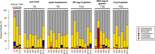 Composition of the fecal microbial communities (at phylum level).Microbial composition of fecal samples from Trial subjects (ID*) prior to and following infection by Necator americanus (T0 and T8, respectively), as well as following administration of escalating doses of gluten (50 mg/day – T24; 350 mg/day – T36; 3 g/day – T52) as predicted in the analysis of the V1-V3 16S rRNA gene. The composition of the microbial communities detected in fecal samples from Control subjects with active celiac disease (C*) is also shown.