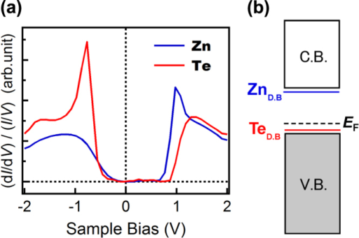 (a) Normalized differential conductance (NDC)—sample bias voltage spectra obtained above a Zn atom (blue) and a Te atom (red). The setpoint voltage and current were Vs = −2.0 V and It = 20 pA, respectively. The peaks shown in the blue (+1.0 eV) and red (−0.8 eV) lines indicate the energy levels of the dangling bond states of the surface Zn and Te atoms, respectively. (b) Schematic of the ZnTe band structure derived from the NDC-Vs spectra.