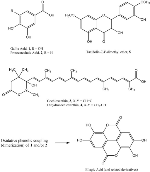 Chemical structures of phenolic compounds and carotenoids isolated from C. angolensis and biosynthetic relationship of 1 & 2 to ellagic acid.