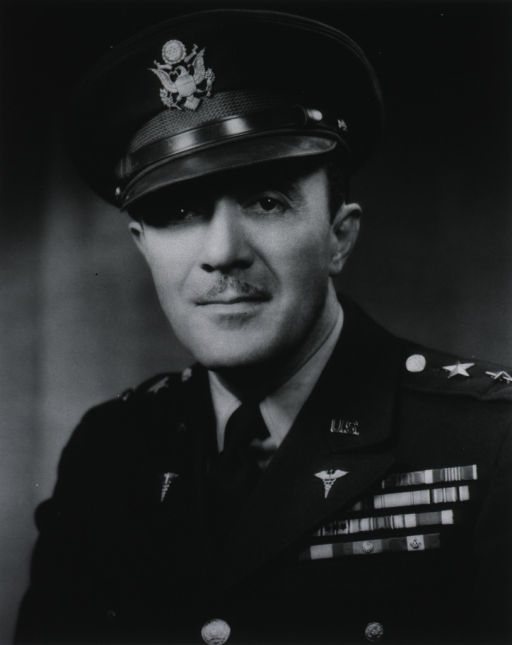 <p>Bust, full face, uniform, cap, major-general.</p>
