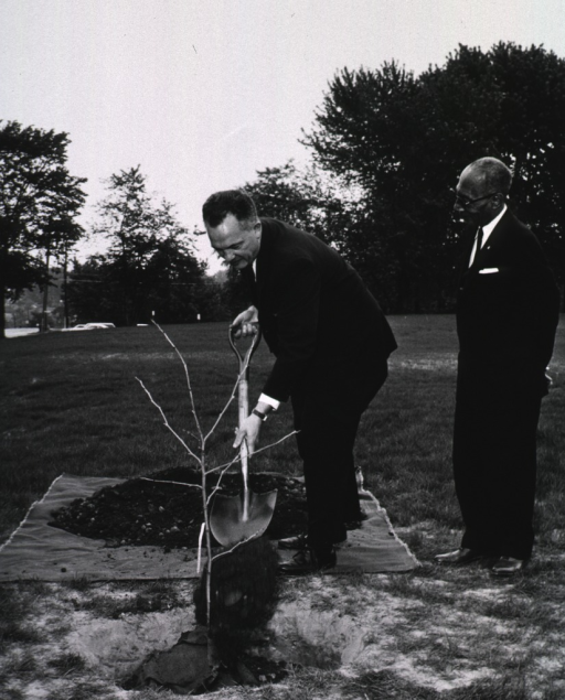 <p>Exterior view:  As Mr. Smith looks on, Dr. Rogers adds a shovel of dirt to a cutting from the &quot;Hippocrates&quot; plane tree presented to NLM by the Greek Ambassador Alexis Liatis.</p>