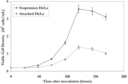 Growth of suspension and attached HeLa cells in bioreactors under batch conditions. Attached HeLa cells were grown on Cytodex 3 microcarriers.