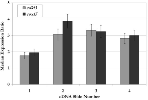 Median expression ratios for cdkl3 and cox15 from four different spotted cDNA microarray slides. The median expression ratio is calculated from 3 or more gene-specific spots on a single slide. The error bars indicate the range in expression ratios observed for a given slide.