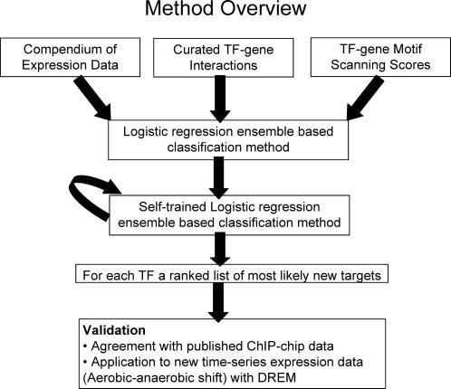 Method overview.SEREND takes as input a compendium of expression data [14], a curated set of E. coli TF–gene interactions with direct evidence [1], and scores for TF–gene motif association based on the PWMs present in RegulonDB [2]. SEREND uses a logistic regression ensemble-based classification method where all non-confirmed targets were initially treated as unregulated by the TF. SEREND then relaxed this assumption using a self-training method. We evaluated the ranked predictions of SEREND using published ChIP-chip data, and by combining SEREND's predictions with a new set of time series gene expression data on aerobic-anaerobic shift response in E. coli.