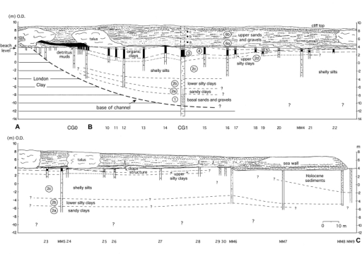 Section A–C showing the lithostratigraphy of the Cudmore Grove channel-fill sequence and overlying sands and gravels (Unit 6). The location of the boreholes is shown in Fig. 3. The position of Unit 3, only a few centimetres thick, at the base of the organic sequence (depicted in black) is indicated. The stratigraphical position of this unit is shown more clearly in Fig. 5. The lateral continuity of sub-units 2c and 2d near boreholes MM6–MM7 is unclear; here the Pleistocene beds are replaced by Holocene estuarine deposits (Fig. 3) which are compositionally similar to the upper part of the Pleistocene channel-fill sequence and locally indistinguishable. Samples for clast lithological analysis (Table 1) were collected from the cliff sections near borehole CG1 (sampling points a, b, c).