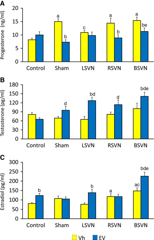 Concentration of steroid hormones. P4 (A), T (B) and E2 (C) serum levels in rats with LSVN, RSVN or BSVN. Mean ± SEM of P4, T and E2 levels in rats injected with vehicle (Vh) or estradiol valerate (EV) at day 10 of life, untouched (control), with sham-surgery (sham) or unilateral (LSVN or RSVN) or bilateral vagotomy (BSVN) at day 24 of life, sacrificed at day 90–92 of life. a p < 0.05 vs. Vh control group, b p < 0.05 vs. paired Vh group, c p < 0.05 vs. sham Vh group; d p < 0.05 vs. EV control group; e p < 0.05 vs. sham EV group (Repeated Measures of analysis of variance, followed by Dunn's test).