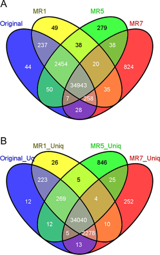 Number of variants called using original read mapping and mapping after the application of MR1, MR5 and MR7. A. Using all the reads. B. After removal of non-uniquely mapped reads.