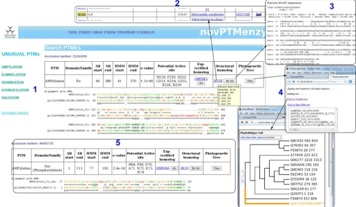 Screenshots depicting typical analysis using search interface and comparative sequence analysis tools of novPTMenzy database. Panel 1: The Search interface used sequence to HMM profile alignment to identify AMPylation domain in query sequence and classified it as Fic type from among Fic, Doc, AvrB and AnkX subfamilies. It also depicts putative active site residues identified in the Fic type AMPylation domain, provides links to experimentally characterized homologs and also structural homologs. Panel 2: Structural homologs of the Fic domain in the query sequence. Panel 3: Alignment with the closest structural homolog obtained by clicking the button labeled 'Str Ali' in the structural homolog cell in Panel 1. Panel 4: Tree button in Panel 1 builds a phylogenetic tree of the PTM catalyzing domain in the query sequence along with seed sequences for the corresponding domain stored in novPTMenzy. It could be either visualized by clicking 'view tree' button or downloaded for further analysis. Panel 5: Identification of a Doc domain in a different query sequence using the search interface of novPTMenzy.