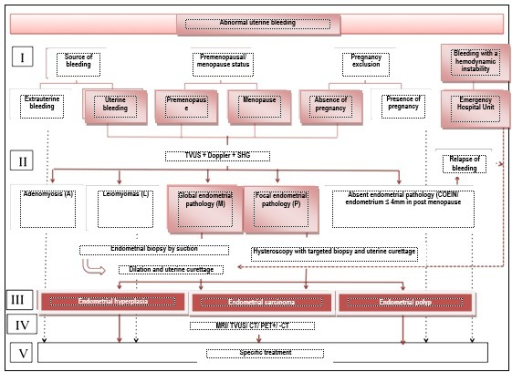 Diagnosis algorithm of abnormal uterine bleeding