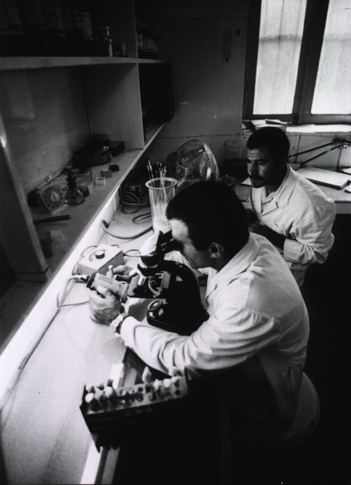 <p>Interior view: two technicians are sitting at a bench; one of them is looking into a microscope.</p>