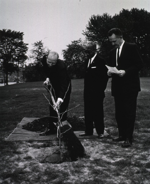 <p>Exterior view: As Mr. Smith and Dr. Rogers look on, Mr. Kurth adds a shovel of dirt to a cutting from the &quot;Hippocrates&quot; plane tree presented to NLM by the Greek Ambassador Alexis Liatis.</p>