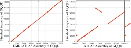 Two alignments of assemblies to the finished sequence of BAC GQQD.The original Atlas assembly created two scaffolds only covering 73.2% of the finished sequence. Note the misplaced 20 Kb segment in the Atlas assembly. The UMD+Atlas assembly of GQQD correctly places the 20 Kb section originally misplaced and creates a single scaffold of the BAC covering 93.3% of the finished sequence. This UMD+Atlas assembly used reliable overlaps. This was the BAC that gave Atlas the most trouble.