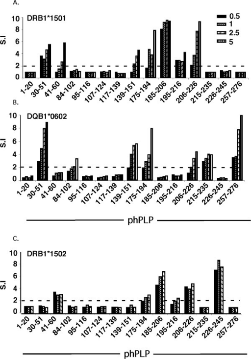 Mapping immunogenic DR15- and DQ6-associated PLP T-cell epitopes by immunization with individual overlapping peptides spanning hΔPLP. HLA-DRB1*1501-Tg, HLA-DQB1*0602-Tg and HLA-DRB1*1502-Tg (as control HLA-Tg line) mice were immunized (s.c.) each with an individual peptide (derived from native hPLP) of the overlapping peptides spanning hΔPLP. Ten days later, the primed LNC of immunized mice were analyzed ex-vivo for recall proliferative response to the immunizing peptide (0.5 - 5 μg/ml). Results expressed as stimulation index (S.I., mean cpm of antigen containing cultures/mean c.p.m of medium-containing cultures) are from one experiment with pooled draining LNC from two mice immunized with each individual peptide. Results are representative of three independent experiments.