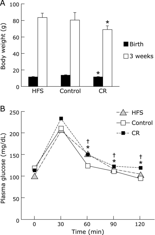 Body weight changes and oral glucose tolerance test in offspring. (A) Body weight of offspring was measured at birth and at 3 week-old. Data are mean ± SEM *p<0.05 vs CT group. (B) Oral glucose tolerance test in offspring was performed as described in Materials and Methods. After fasting for 13 h, the rats were given an oral dose of glucose 2 g/kg body weight. Blood samples were taken at 0, 30, 60, 90 and 120 min after glucose administration. Data are mean ± SEM, n = 6–10 rats/group, *p<0.01 vs CT group for CR at 60, 90 and 120 min and †p<0.05 vs CT group for HFS at 60, 90 and 120 min.