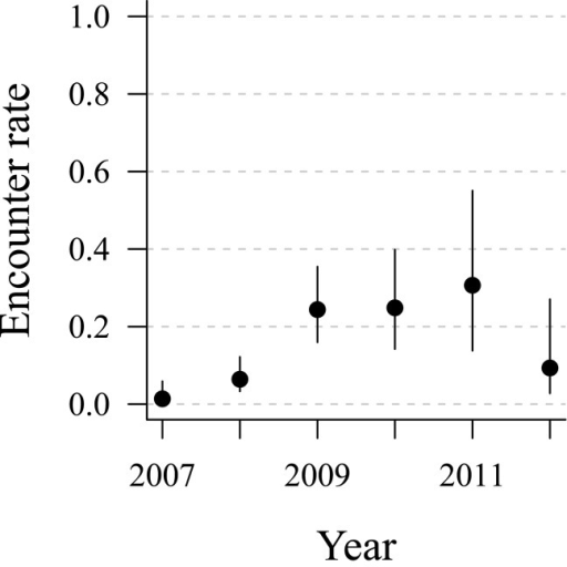 Time-dependent encounter (or resighting) probabilities for banded, hand-reared African penguins released by SANCCOB in 2006 and 2007.Resightings were made over the period 2007 to 2012. Encounter probabilities are based on model 2, Table 4. Error bars show the 95% confidence intervals.
