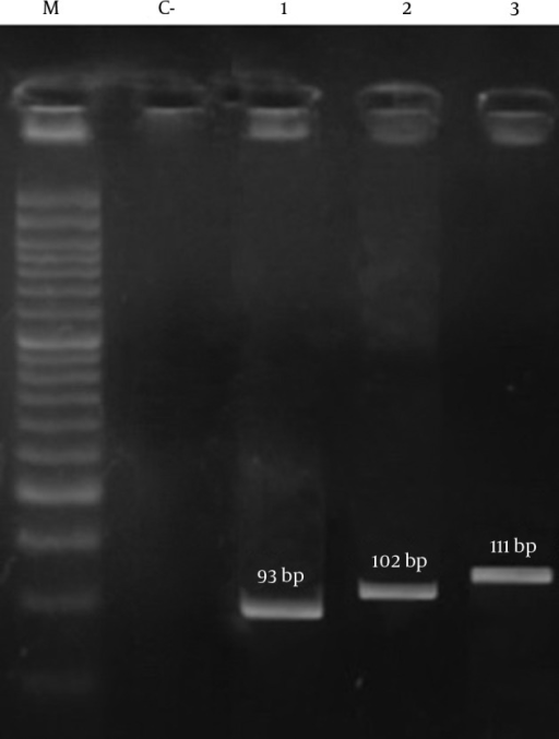 Patterns of Agarose Gel Electrophoresis Showing PCR Amplification Products for the Isolated S. aureus Genes.Lanes M, DNA molecular size marker (50-bp ladder; Cinna Gen, Iran); C-: negative control; lane 1: eta; lane 2: sea; lane 3: hld