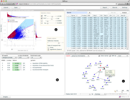SNPsyn graphical user interface.a) A synergy versus information gain plot is used to select SNP-SNP pairs. b) Gene Ontology enrichment analysis for genes overlapping with selected SNP-SNP pairs. c) Synergy network of selected SNPs.