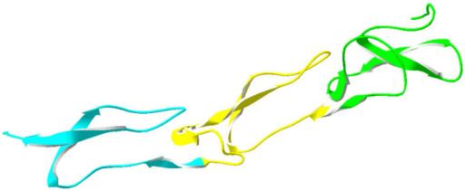 PDB 1D0G chain T domain assignment.PDB:1D0G chain T was approximately in agreement with the assignment in the Benchmark_3.