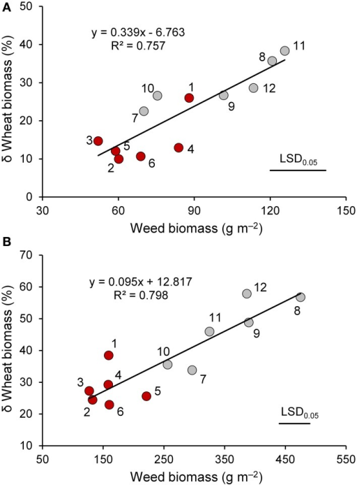 "The relationship between weed biomass and percent variation in biomass of wheat genotypes (red circle, ""old"" genotypes; gray circles, ""modern"" varieties) in the presence of interspecific competition with respect to the absence of competition at the end of tillering (A) and at heading (B). 1, Biancuccia; 2, Maiorcone; 3, Realforte; 4, Russello; 5, Scorsonera; 6, Cappelli; 7, Capeiti; 8, Creso; 9, Simeto; 10, Valbelice; 11, Iride; 12, Claudio."