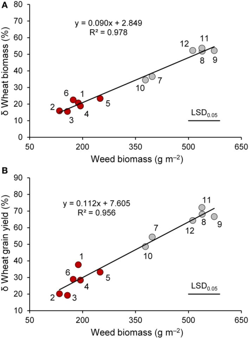 "The relationship between weed biomass and percent variation in biomass (A) and grain yield (B) of wheat genotypes (red circle, ""old"" genotypes; gray circles, ""modern"" varieties) in the presence of interspecific competition with respect to the absence of competition at maturity. 1, Biancuccia; 2, Maiorcone; 3, Realforte; 4, Russello; 5, Scorsonera; 6, Cappelli; 7, Capeiti; 8, Creso; 9, Simeto; 10, Valbelice; 11, Iride; 12, Claudio."